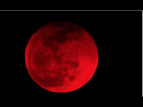 Jeremy W - Super Blood Wolf Moon Over Metro Detroit Next Week