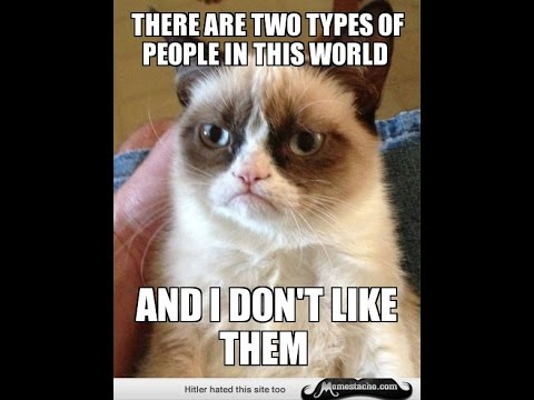 hqdefault grumpy cat meme youtube,Meme Grumpy Cat