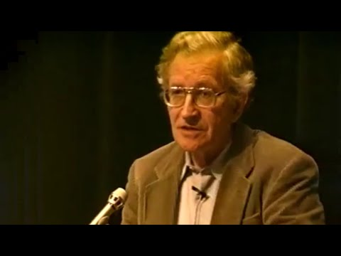 Noam Chomsky - Mathematics, Language, and Abstract Objects