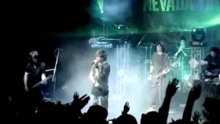 PANIK / NEVADA TAN - Wie es ist? Live DVD Niemand Hoert Dich