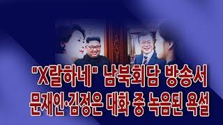 """""""X랄하네"""" 남북회담 방송서 문재인·김정은 대화 중 녹음된 욕설 / 신의한수"""