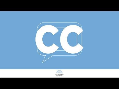 SUBTITULADO: ASAMBLEA LEGISLATIVA EN VIVO: 10 de Diciembre de 2019