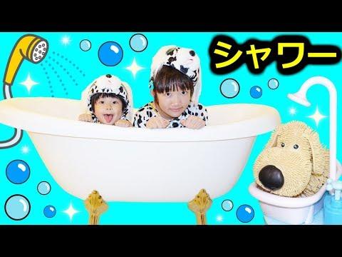 ★わんちゃんたちの「ドキドキシャワータイム!」★Dog's shower time★
