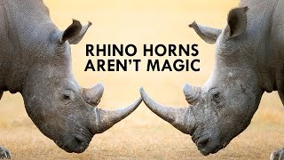Rhinos are Unicorns, but their Horns aren't Magic