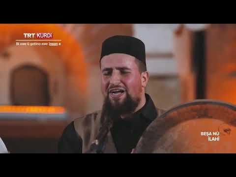 Alend Hazim |Molla Sami - Tovbedarim