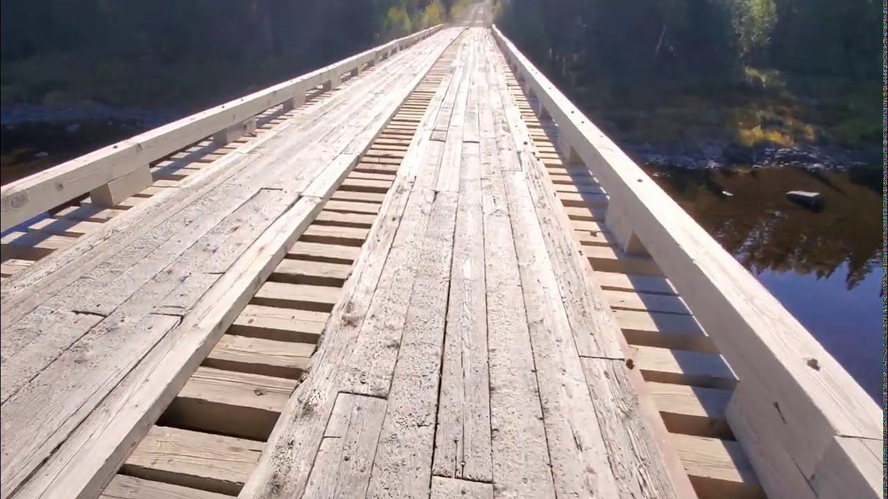 Walking Across Narrow Logging Bridge