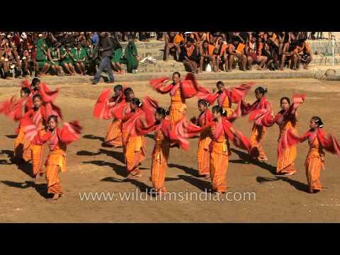 Graceful dance presented by Mech Kachari in Nagaland