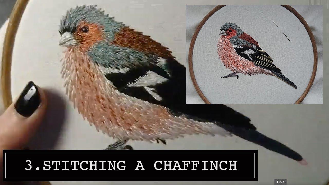 Hand Embroidery Stitching A Chaffinch Craft Jitsu Online Class