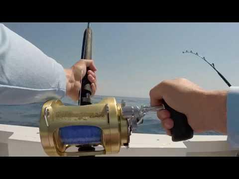 2 Big Eye Tunas Ocean City MD Wrecker Sport Fishing Charter