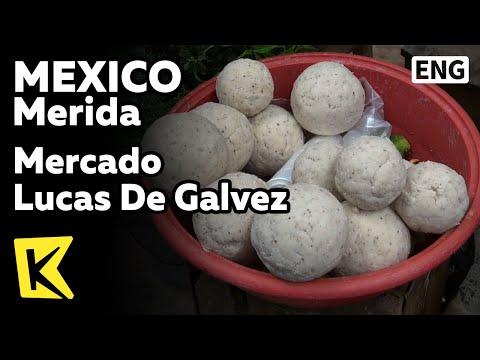 【K】Mexico Travel-Merida[멕시코 여행-메리다]갈베스시장/Mercado Lucas De Galvez/Cancun/Tortilla/Habanero/Tamale