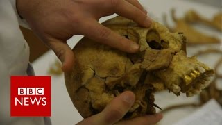 Cyprus: Searching for the dead - BBC News