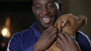 "COUNTDOWN: Terence ""Bud"" Crawford vs. Amir Khan"