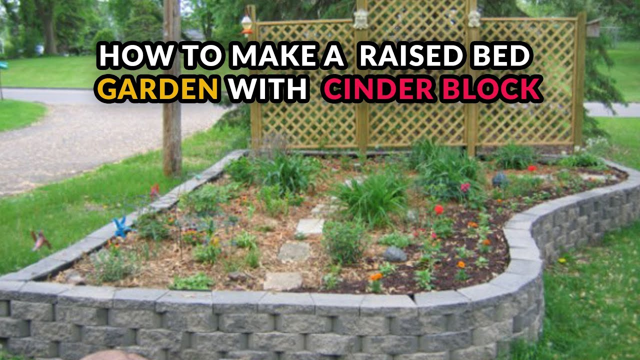 Cinder Block Raised Beds