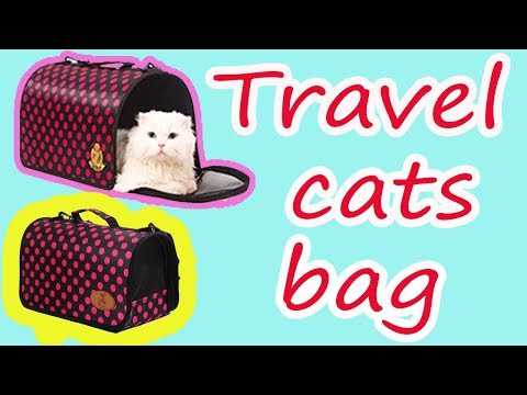 Travel cats bag for your MEOW