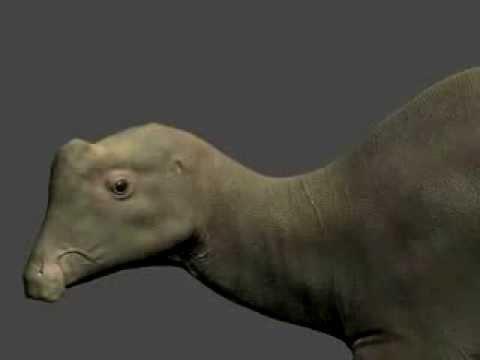 Joe the Parasaurolophus