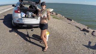 Texas City Dike (fishing)