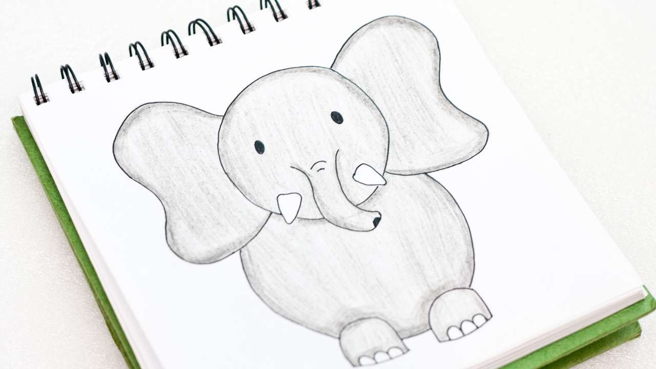 Cute elephants to draw the image kid for Cute whiteboard drawings