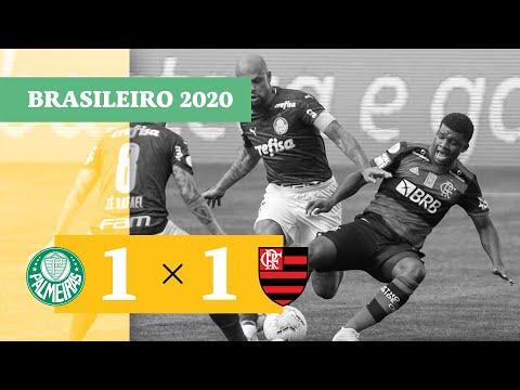Palmeiras Flamengo RJ Goals And Highlights