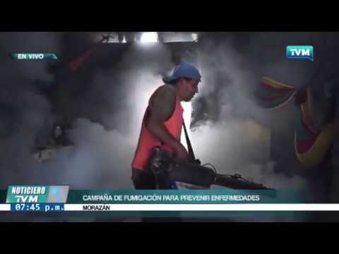 NOTA NOTICIERO TVM   ALCALDÍA Y MINISTERIO DE SALUD FUMIGAN COLONIA VISTA HERMOSA