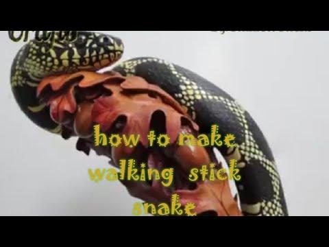 Wood Snake on the Rod