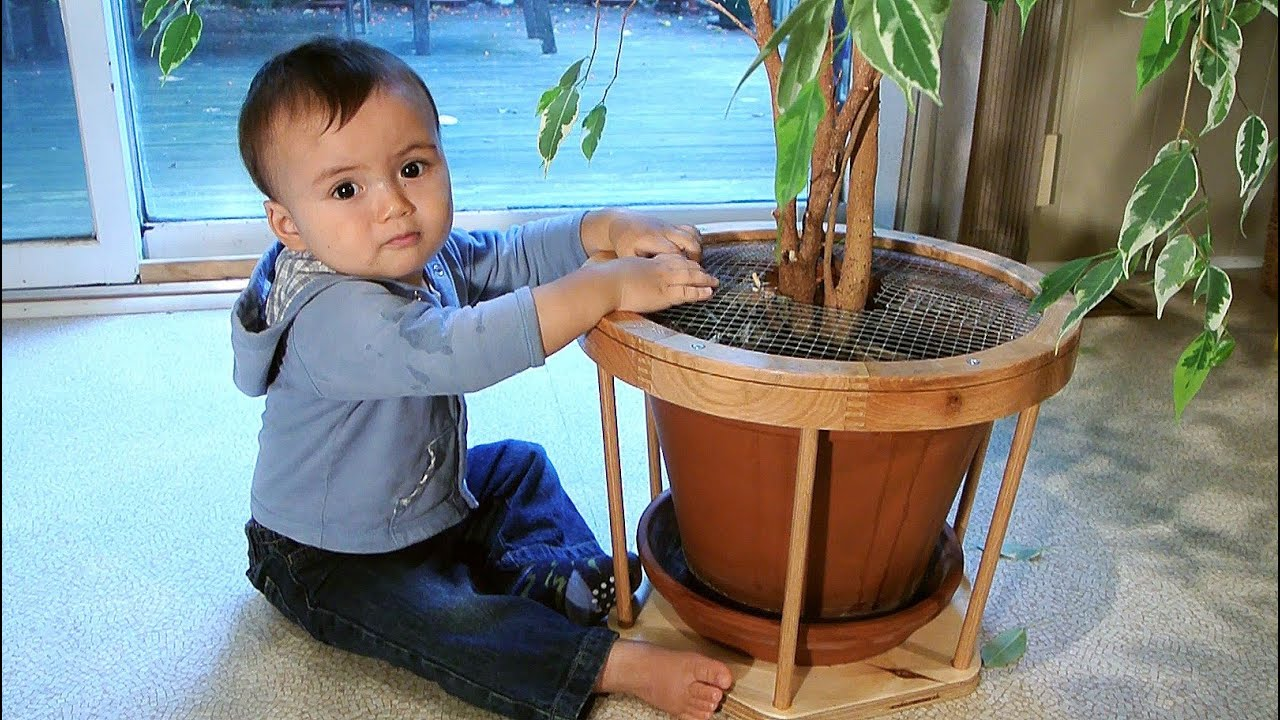 Baby Proofing A Flower Pot Youtube