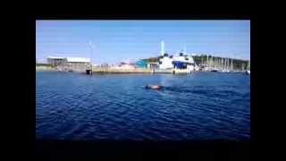Swimming around Anholt, July 11, 2013. Part 3
