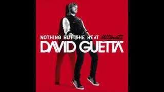 Baixar David Guetta - Play Hard (feat. Ne-Yo & Akon) [Audio]