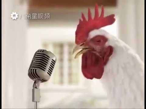 cock song -ALARM