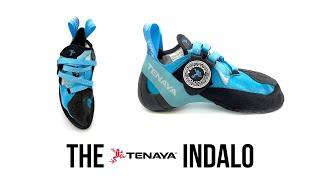 Tenaya - Indalo Climbing Shoe