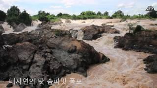 [라오스 여행] 대자연의 탓 솜파밋 폭포