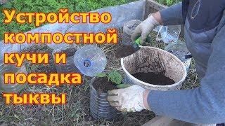 Готовим компостный ящик и высаживаем тыкву