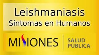 Leishmaniasis - Síntomas en Humanos - Spot de Radio