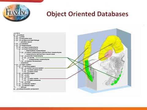 Selecting the RIGHT Database for your Project (Relational vs. RDF Triple Store)