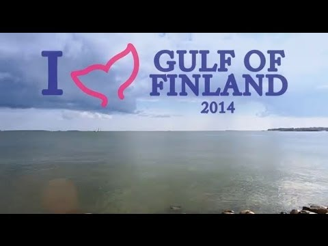 I love Gulf of Finland