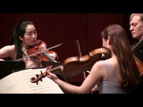 Brahms - String Quartet in C Minor, Op. 51 no. 1     Cincinnatus Quartet