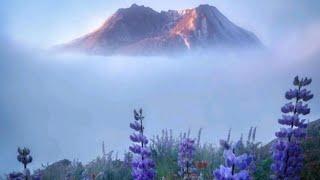 태국에서 아침풍경 힐링…