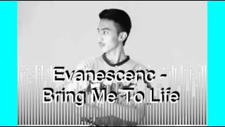 Evanescenc   Bring Me To Life mp3