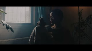 CLAN CAIMAN - Venado Tuerto (Official Video)