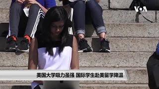 美国大学吸力虽强 国际学生赴美留学降温