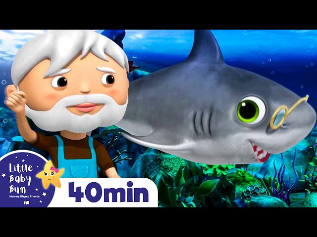 Baby Shark Dance | + More Nursery Rhymes & Kids Songs | Songs for Kids | Little Baby Bum