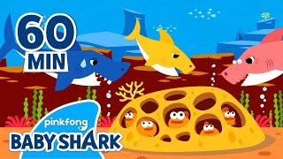 Original Baby Shark 1 hour | Baby Shark 1hour | +Compilation | Baby Shark Official