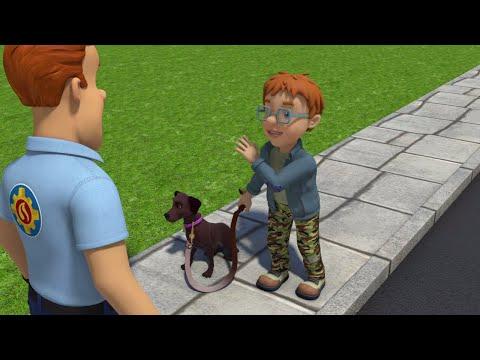 Бедствие в День Собаки! | Пожарный Сэм ⭐️Компиляция | Мультфильмы для детей