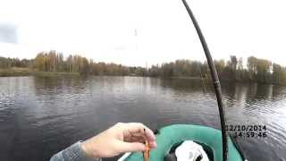 Ловля щуки на блесну осенью (видео-отчет) Рыбалка 12 октября 2014 Уокер - молодец!