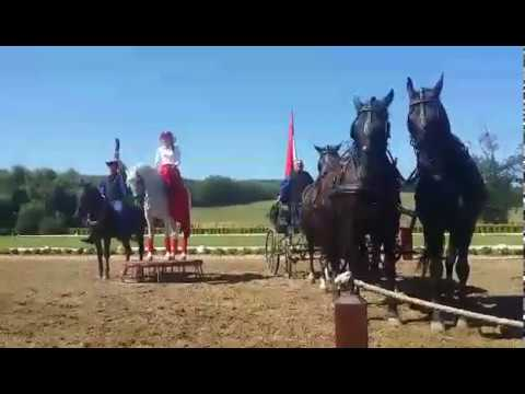 Horse show in Hungarian Great Plain
