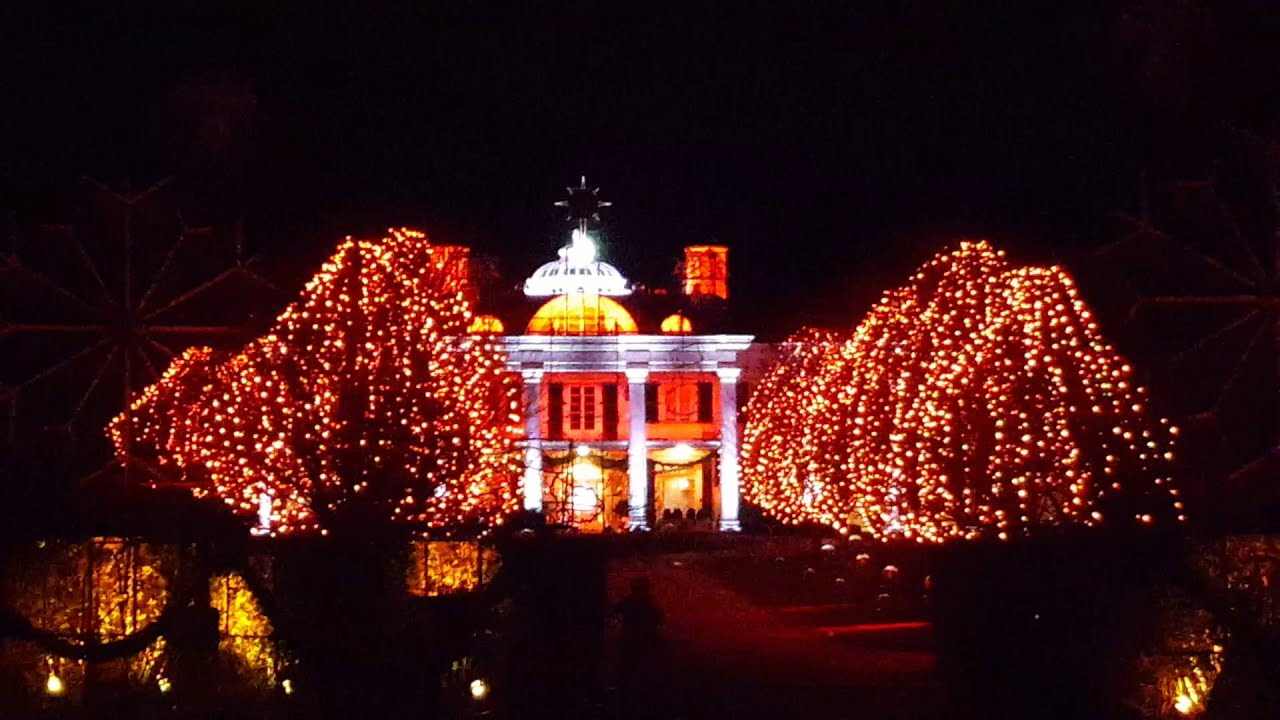 Christmas Lights at Paul Tudor Jones - YouTube