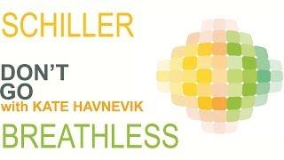 Schiller - Don't Go with Kate Havnevik