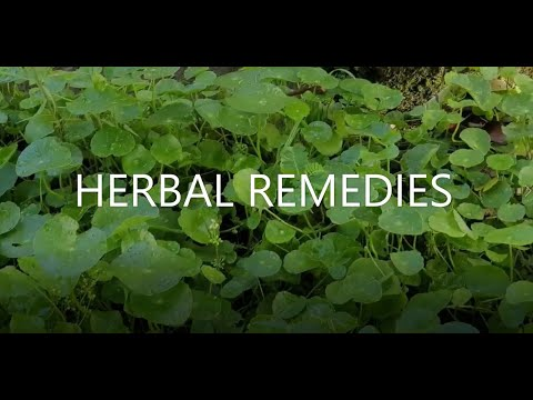 Herbal Remedies | Alternative Medicine at Home