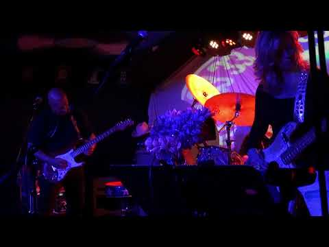 The Mermen at Moe's Alley 12/30/2017 - Set 1C