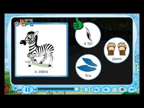 At the zoo animal body parts (ส่วนต่างๆของสัตว์) - สื่อการเรียนการสอน ภาษาอังกฤษ ป.3