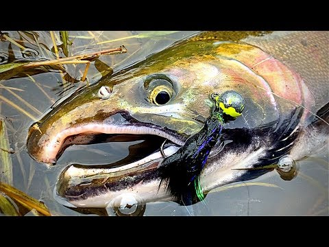 WINTER Salmon Fishing | Jigging For Coho | Washington 4K